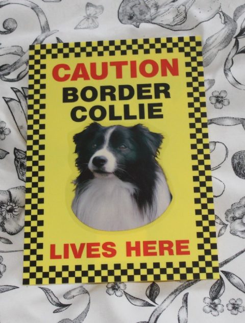 BORDER COLLIE SIGN, CAUTION BORDER COLLIE LIVES HERE -  DOG SIGN